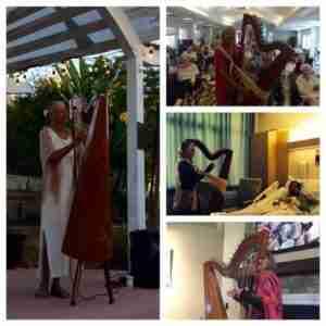 Geri Afshari and harp therapy